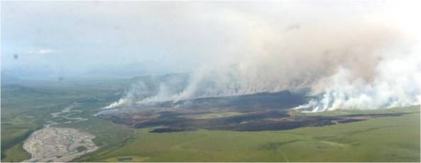 Tundra_Fire