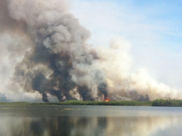 card streeet smoke plume